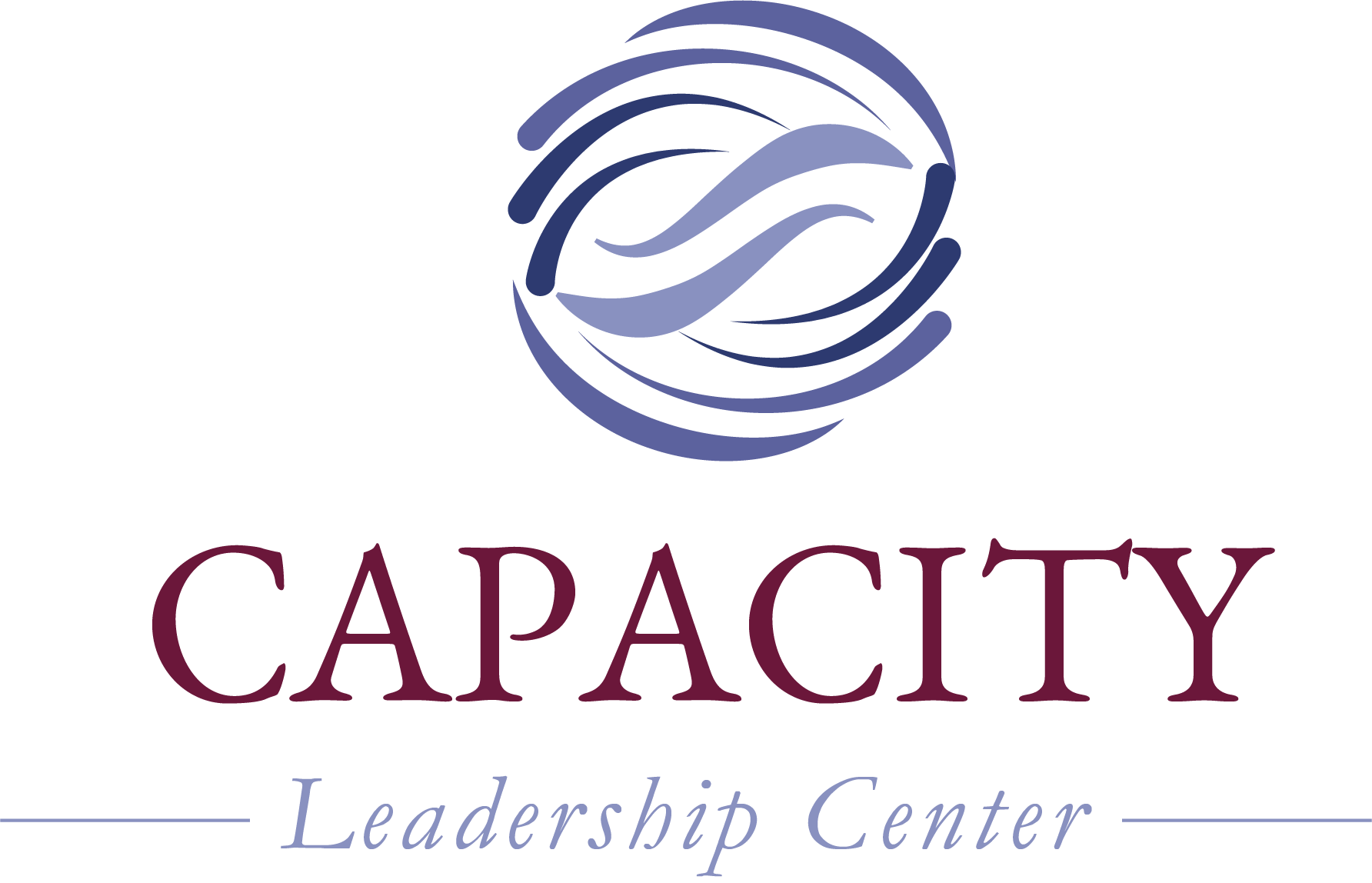Capacity Leadership